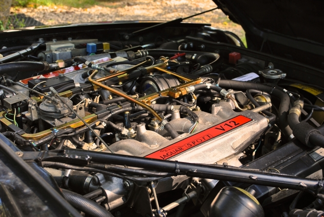 Moteur Jaguar XJR-S TWR V12 6,0l (1990)